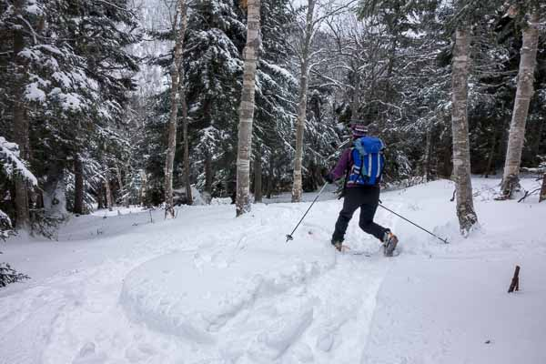 Skiing the Birch Glades off the Bolton To Trapp Trail.